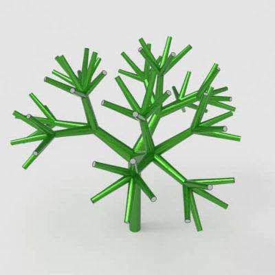 anemone-branch