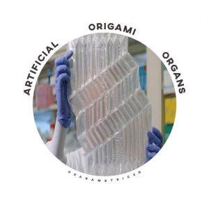 Origami Organs