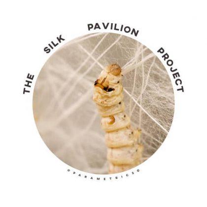 Silk Pavilion