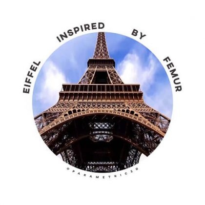 Eiffel Inspired by Femur