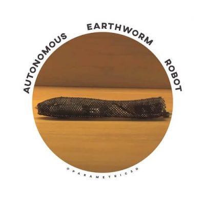 Autonomous Earthworm Robot