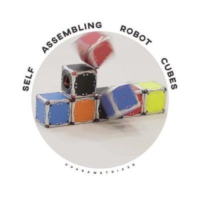 Self Assembling Robot Cubes
