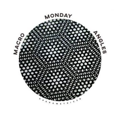 Macro Monday Angles