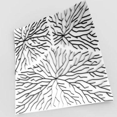 venation-pattern