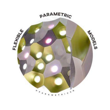 Flexible Parametric Models
