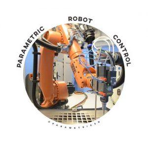 Parametric Robot Control