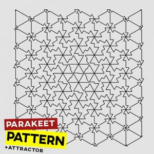 Parakeet Pattern Pt Attractor
