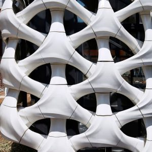Arachne 3D Printed Facade