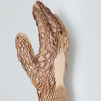 The Anatomy of the Hand