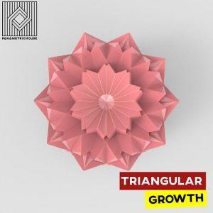 Triangular Growth Grasshopper3d Definition Anemone Plugin