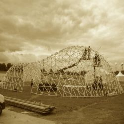 From shape to shell: a design tool to materialize freeform shapes using gridshell structures