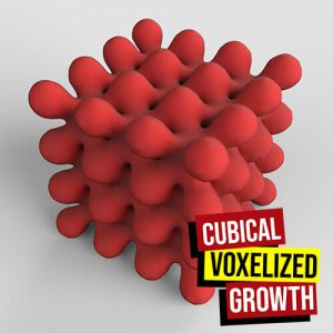 Cubical Voxelized Growth Grasshopper3d Definition Dendro Anemone Plugin