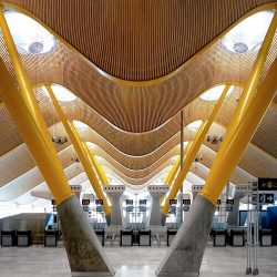A Novel Concept for Airport Terminal Design Integrating Flexibility