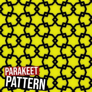 Parakeet Star Pattern I Grasshopper3d Definition