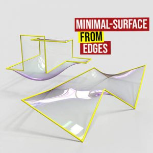 Minimal Surface from Edges