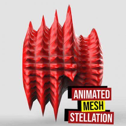 Animated Mesh Stellation Grasshopper3d