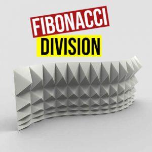 Fibonacci Division