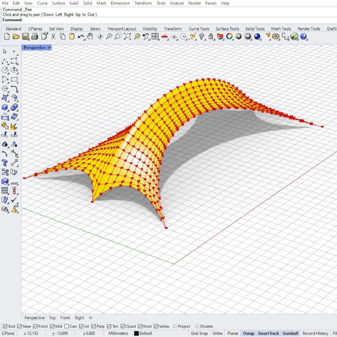 Kangaroo Tensile Structure