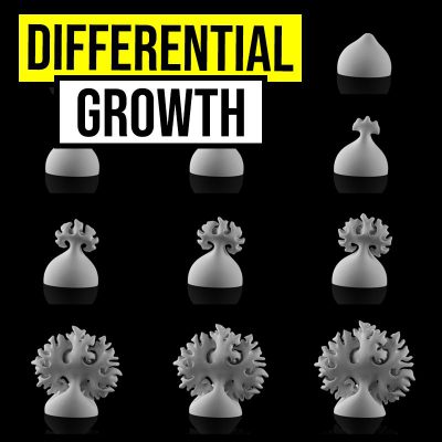 differential growth-01