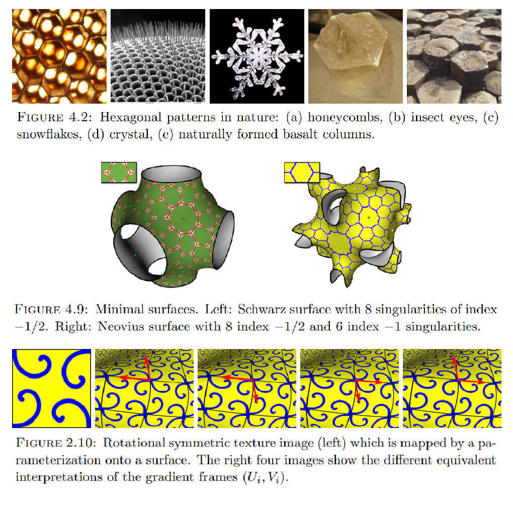 Polyhedral Surfaces