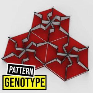Genotype Pattern