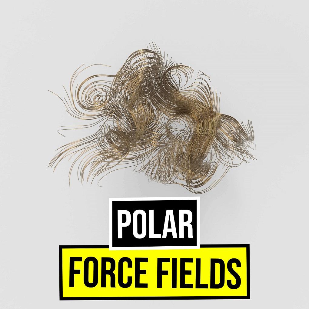 Polar Force Fields