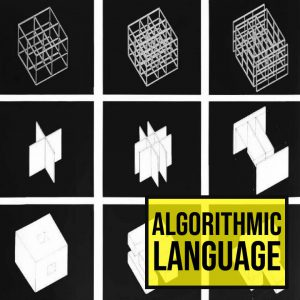 Algorithmic Language