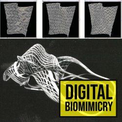 Digital-Biomimicry-01