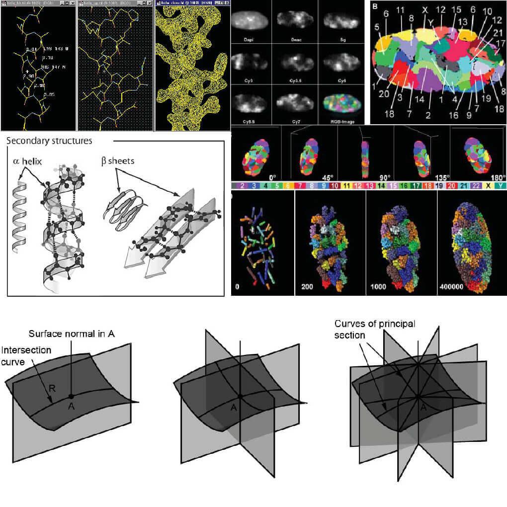 Digital Biomimicry